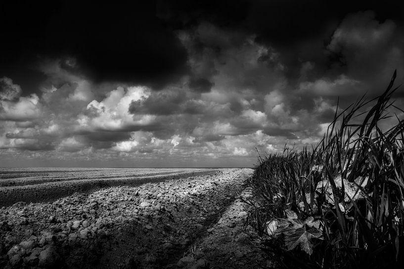 The edge van Ruud Peters