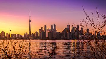 Toronto sunset skyline sur Yannick Karnas