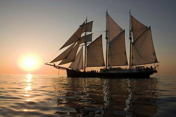 Sailing sur Thijs Schouten