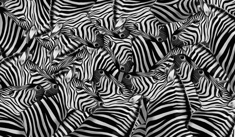 Zebra Collage von Marion Tenbergen