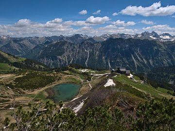 Panoramisch uitzicht vanaf de top van de Fellhorn over de Alpen van Timon Schneider