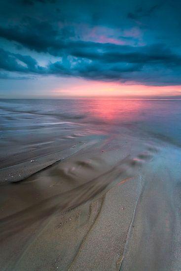 The cure for anything is salt water sweat, tears, or the sea van Dion van den Boom