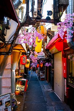 Kersenbloesems en nauwe straatjes in Tokio van Mickéle Godderis