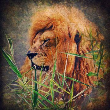 A Lion Portrait van Angela Dölling