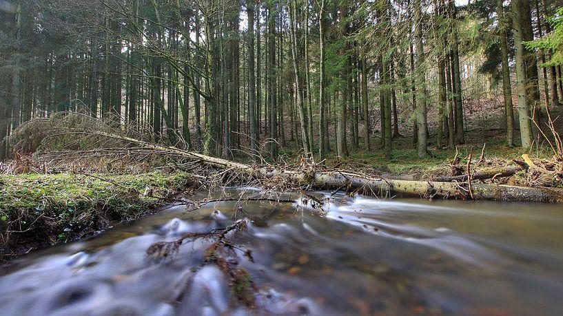 stream van Maurice Hoogeboom