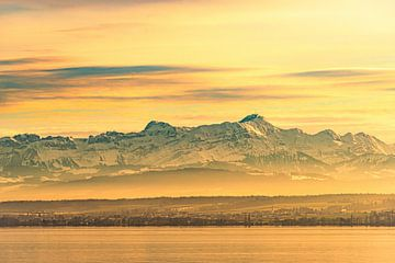 Uitzicht op het Bodenmeer en de Zwitserse Alpen in de herfst van Dieter Walther