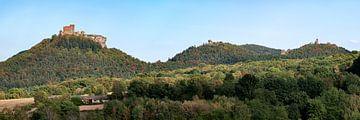 Trifels Panorama van Uwe Ulrich Grün