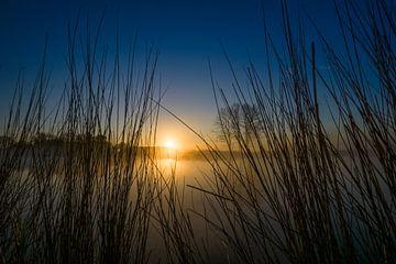 Doorkijk van Koen Boelrijk Photography