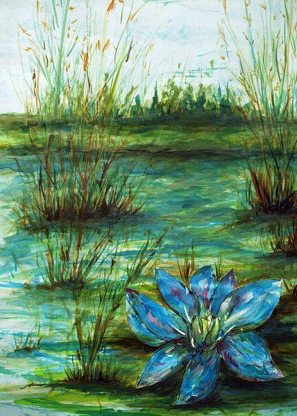 Blaue Wasserlilie. von Ineke de Rijk
