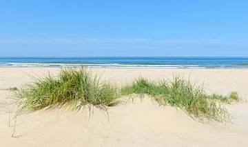 Zomer op het strand aan de Noordzee van Sjoerd van der Wal