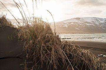 Zwart strand in IJsland van
