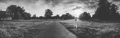 Landschap in zwart-wit
