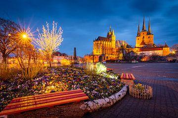 Lente in Erfurt van Martin Wasilewski