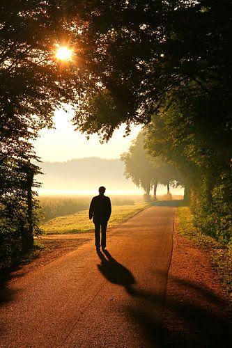 Der Weg ins Licht van Bernhard Kaiser