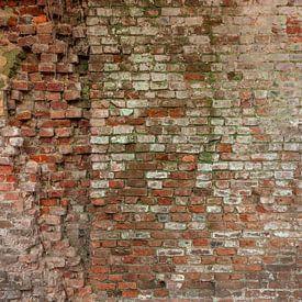 Wand von Olivier Van Cauwelaert