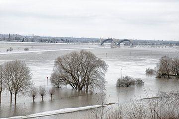 Les plaines inondables du Rhin près de Doorweth.