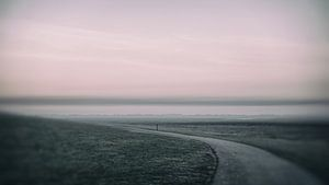 Deich an der Nordsee