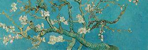 Amandelbloesem schilderij van Vincent van Gogh, panorama versie van