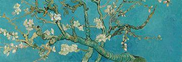 Mandelblüten, Vincent van Gogh