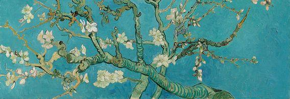 Amandelbloesem schilderij van Vincent van Gogh, panorama versie