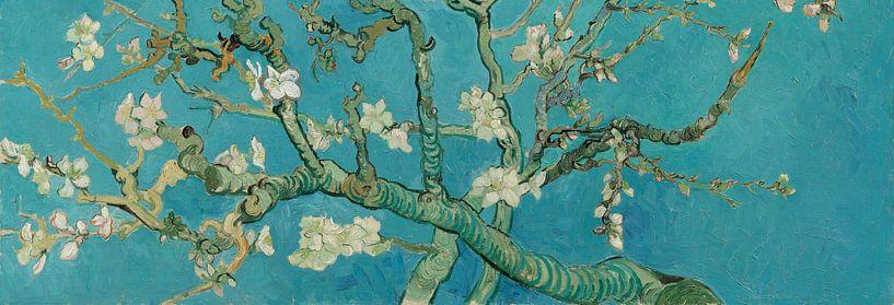 Amandelbloesem schilderij van Vincent van Gogh, panorama versie van Schilders Gilde