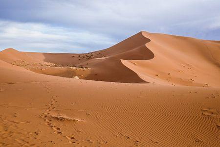 Sahara woestijn bij zonsopgang