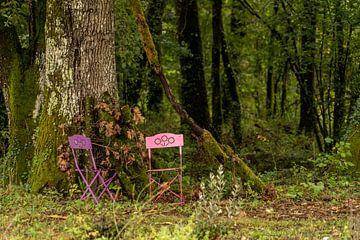 Roze Franse stoeltjes in het bos