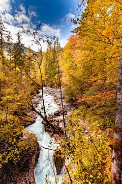 Herbst an der Wimbachklamm von Dirk Rüter