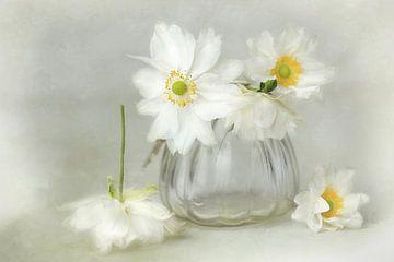 Bloemensymfonie - bella wit van Lizzy Pe