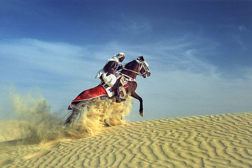 Bedouin auf  Pferd auf Sanddüne von Frans Lemmens