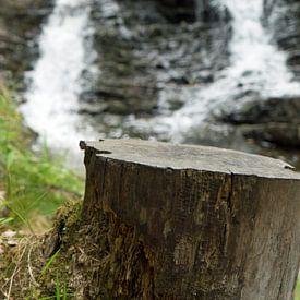 De Plodda waterval is een waterval 5 km ten zuidwesten van het dorp Tomich van Babetts Bildergalerie