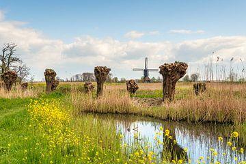 Kleurig Nederlands polderlandschap met molen van Ruud Morijn