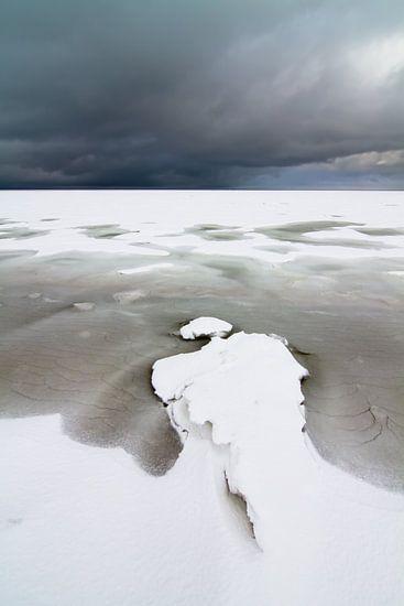 Arctisch Wad van robert wierenga