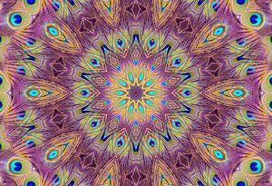 Kaleidoscoop Pauw