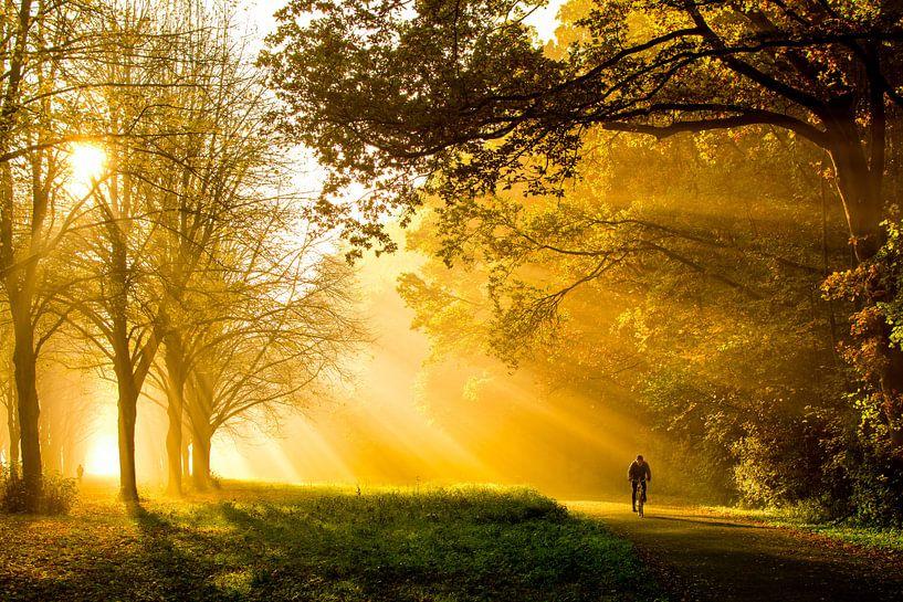 Herfst in het Amsterdamse Bos van Jelmer Jeuring