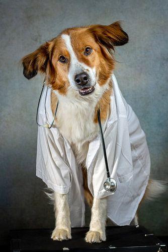 Dokter Cooper
