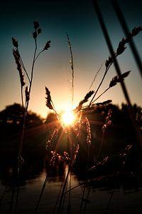 Sonnenuntergang am Kanal von Timo Brodtmann Fotografie