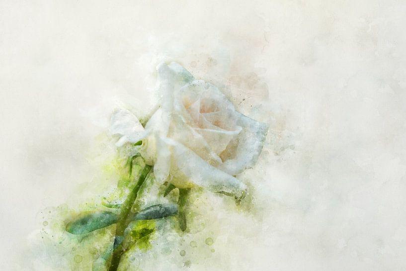 Bloemen 9 van Silvia Creemers