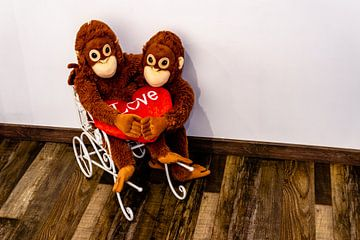Zwei Stofftier Affen sitzen Arm in Arm auf einem Wagen und halten ihre Hände von Tom Voelz