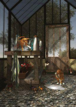 Katten – Katten die in het tuinhuis spelen
