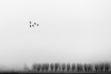 Minimalistisch landschap von Michel Van Nederveen