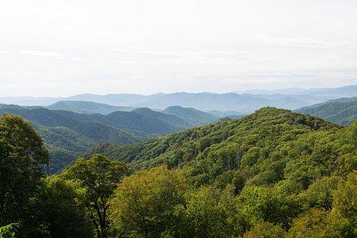 Great Smoky Mountains van