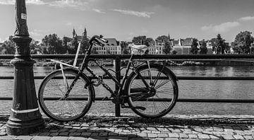 Maastricht, fiets langs de maas van Leo Langen