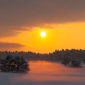 Kleurrijke winter zonsondergang over de sneeuw bedekt vlaktes in de natuur van Sjoerd van der Wal