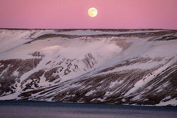 Magisch maanlicht von Joke Beers-Blom