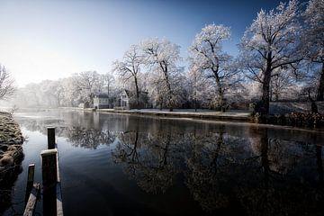 Winter van Henk Leijen