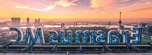 Erasmus MC en skyline Rotterdam (panorama) van