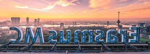 Erasmus MC en skyline Rotterdam (panorama) van Prachtig Rotterdam