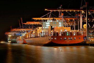 Containerschiff am Anleger Burchardkai von Sabine Wagner