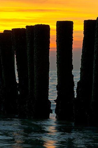 Paalhoofden tijdens zonsondergang te Vlissingen van